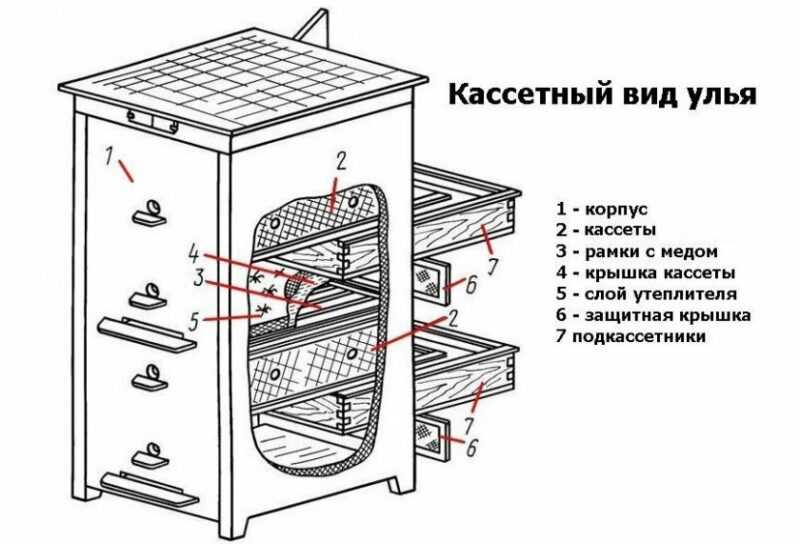 How to make a cassette bee hive?