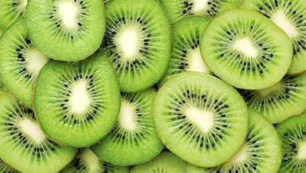 Kiwi, Calories, benefits and harms, Useful properties