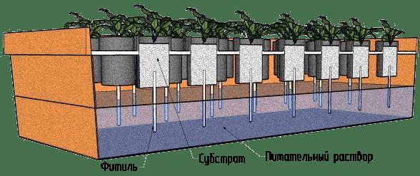Passive hydroponics systems