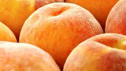 Peach, Calories, benefits and harms, Useful properties