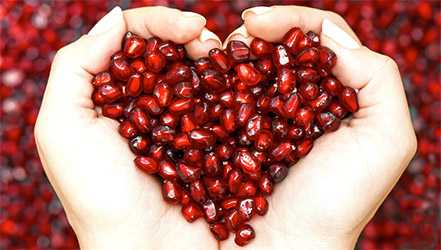 Pomegranate, Calories, benefits and harms, Useful properties