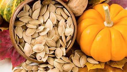 Pumpkin, Calories, benefits and harms, Useful properties