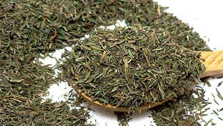 Thyme (thyme), Calories, benefits and harms, Useful properties