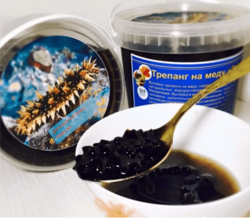Trepang on honey: what is it, how to take it correctly, medicinal properties