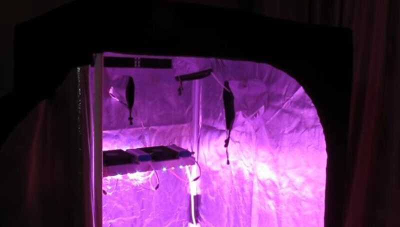 What is a grow tent and why is it needed
