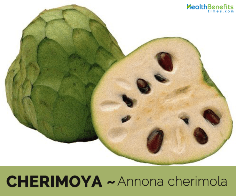Cherimoya, Calories, benefits and harms, Useful properties