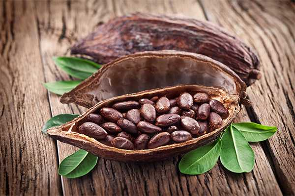 Cocoa fruit - useful and dangerous properties of the cocoa fruit, Calories, benefits and harms, Useful properties