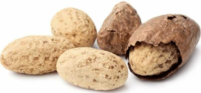 Cola nut, Calories, benefits and harms, Useful properties