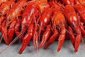 Crawfish, Calories, benefits and harms