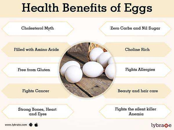 Emu eggs, Calories, benefits and harms, Useful properties