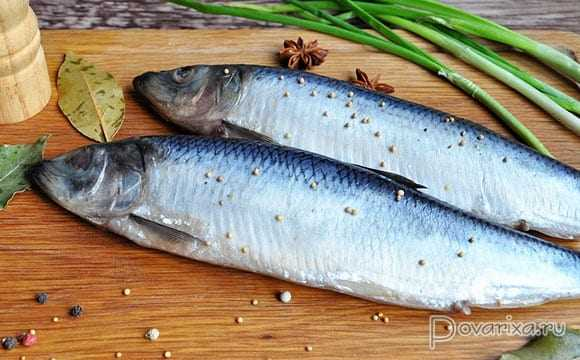 Herring, Calories, benefits and harms, Useful properties