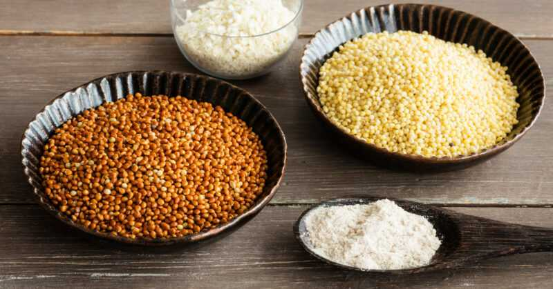 Millet, Calories, benefits and harms, Useful properties