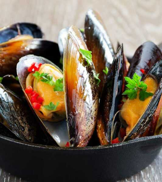 Mussel, Calories, benefits and harms, Useful properties