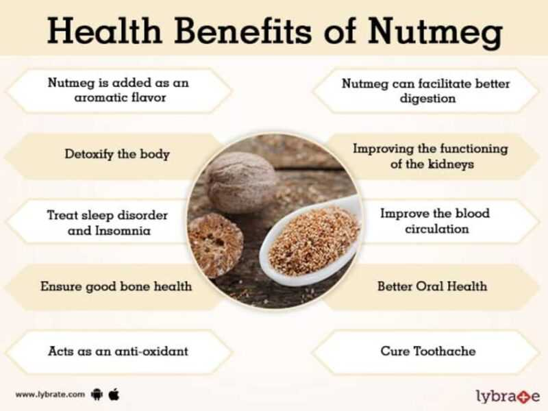 Nutmeg, Calories, benefits and harms, Useful properties