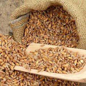 Rudd, Calories, benefits and harms, Useful properties