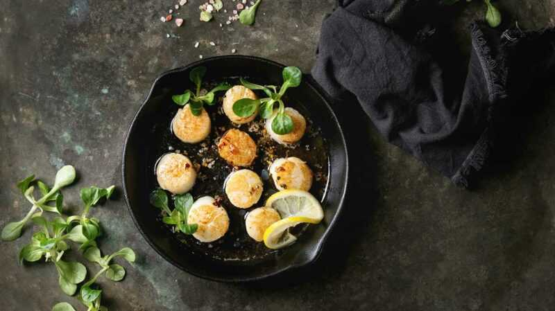 Scallops, Calories, benefits and harms, Useful properties