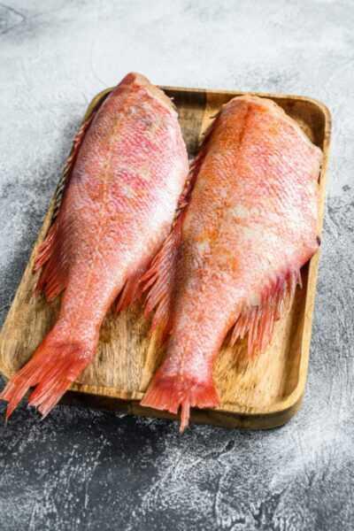 Sea bass, Calories, benefits and harms, Useful properties