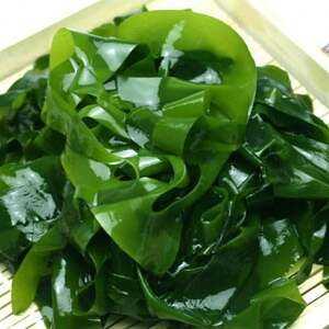 Seaweed, Calories, benefits and harms, Useful properties