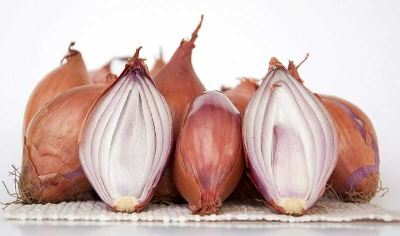 Shallots, Calories, benefits and harms, Useful properties