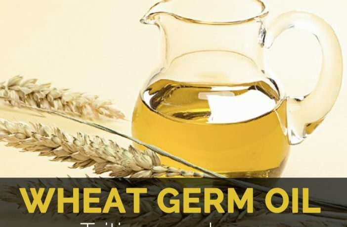Wheat germ oil, Calories, benefits and harms, Useful properties