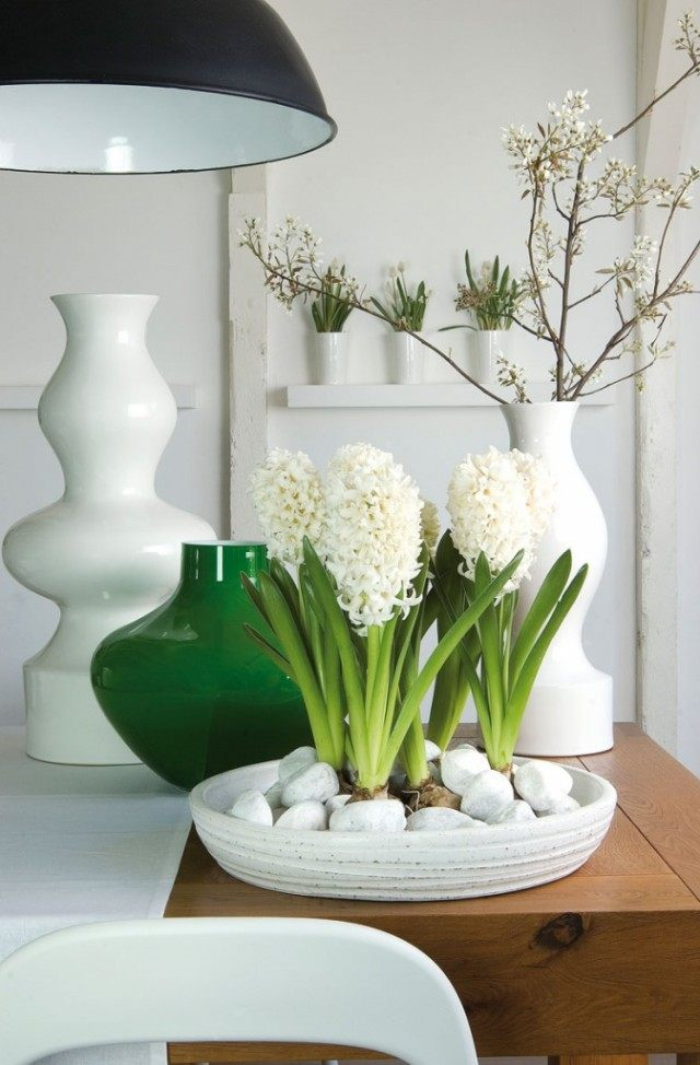 The energy of hyacinth charges a person with vitality and vigor