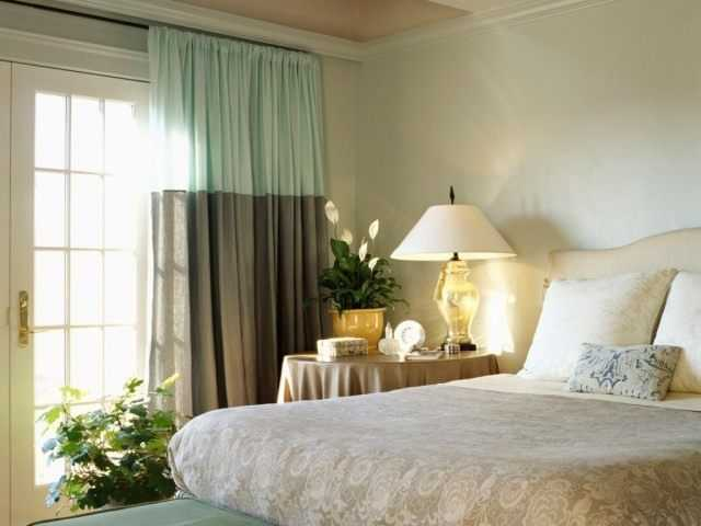 Plants for the bedroom - care