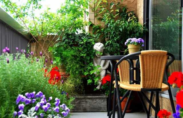 Vertical gardening of balconies – Beautiful indoor plants