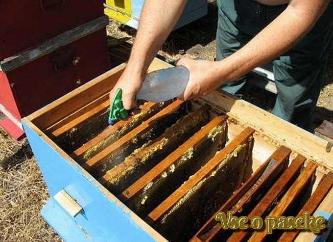 L'utilisation du baume ApiMax pour la prévention et le traitement des maladies chez les abeilles