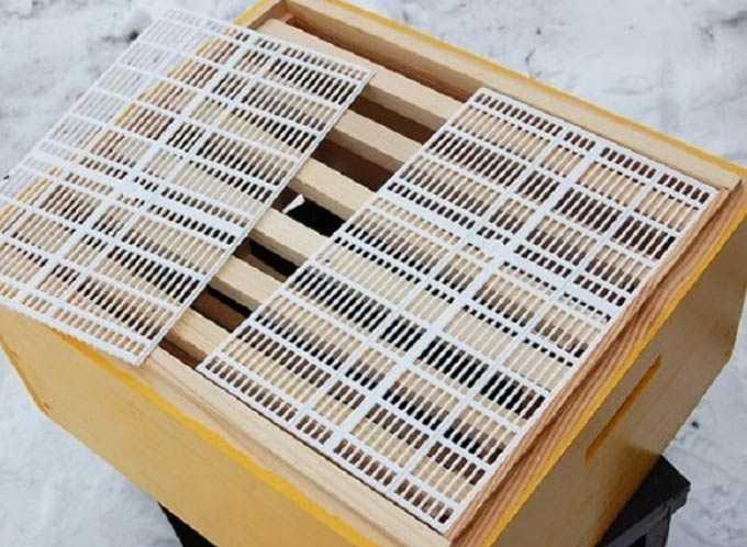 Ruches doubles (ruches doubles) – garder les abeilles, étendre