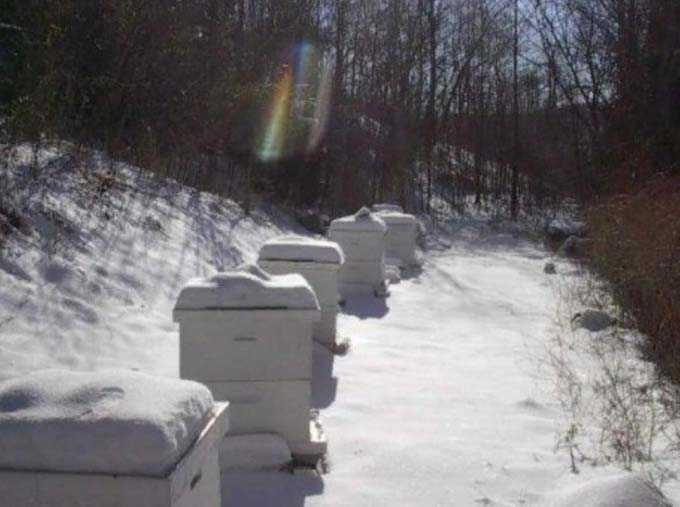 Styromousse pour faire des ruches de vos propres mains