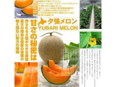Descrizione del pomodoro King of the Market