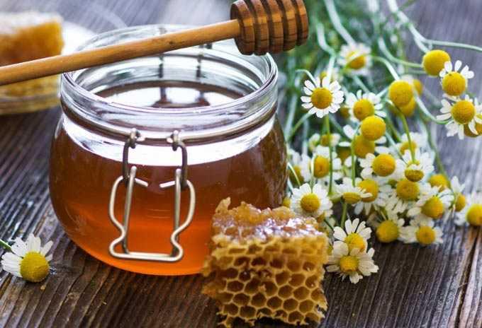 דבש בטיפול במסטופתיה – מה שכל אישה צריכה לדעת