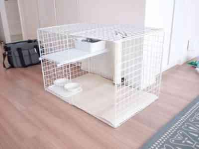 自分で装飾的なウサギのケージを作る方法
