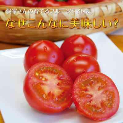 セプトリアトマトの処理