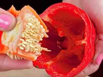 ジャガイモのケメロボカニンの説明