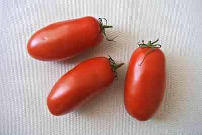 牛肉品種トマトの特徴
