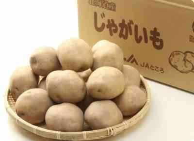 リーダーポテト品種の特徴