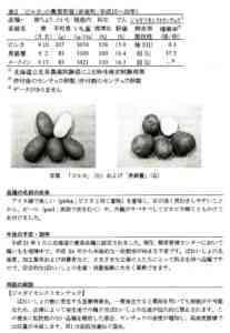 Black Princeジャガイモ品種の説明