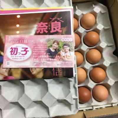 鶏卵編ロマンホワイト