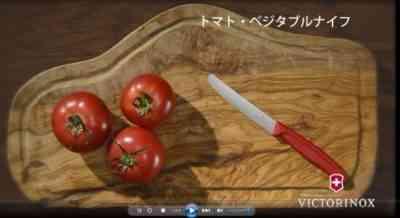 ダイビング後にトマトを養う方法