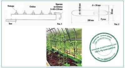コショウ苗に過酸化水素を供給する方法