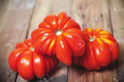 トマトロレーヌの美しさの特徴