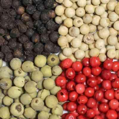 コショウの果実品種の特徴