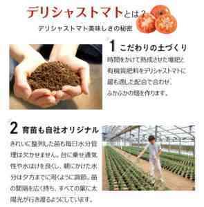 トマトの葉面ドレッシングの実施方法