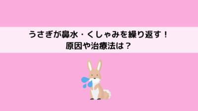 ウサギのくしゃみの原因と治療法