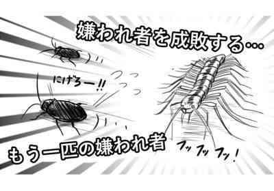 コショウ害虫の対処方法