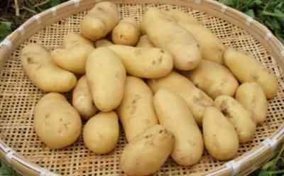 ジャガイモの箱を作るためのルール