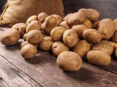 ジャガイモ品種クローンの特徴