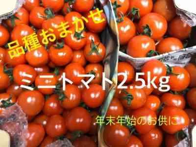 トマト品種の特徴おばあちゃんからの贈り物