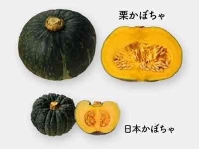 かぼちゃの品種「ビタミン」の特徴